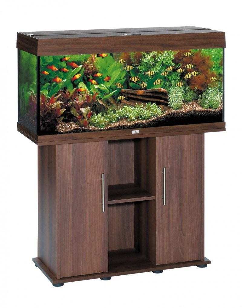 Juwel Aquarium 70700 Unterschrank 121 SB, dunkelbraun: Amazon.de ...