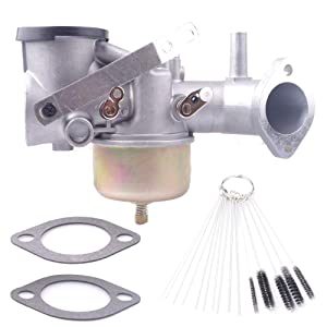 Dosens 491031 Carburetor Carb Kit for Briggs & Stratton 490499 491026 281707 12HP Engines with Gaskets Cleaning Tool kit