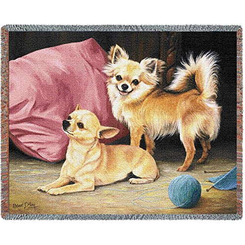 Pure Country Weavers - Chihuahua Woven Tapestry Throw Blanket with Fringe Cotton USA Size 72 x 54 (Afghan Dog Blanket Tapestry Throw)