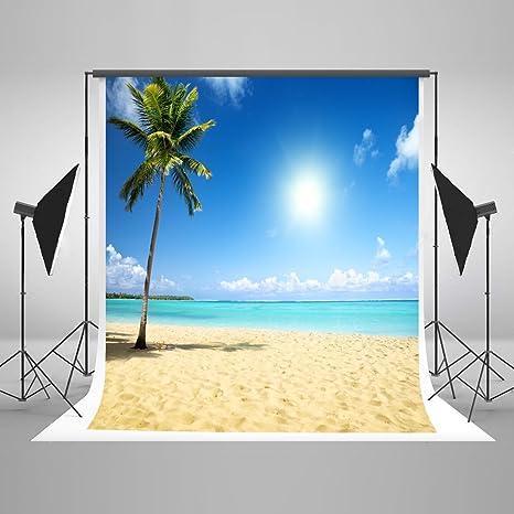 15 X 21 M Fondale Kate Spiaggia Palme Mare Blu Cielo Sfondo