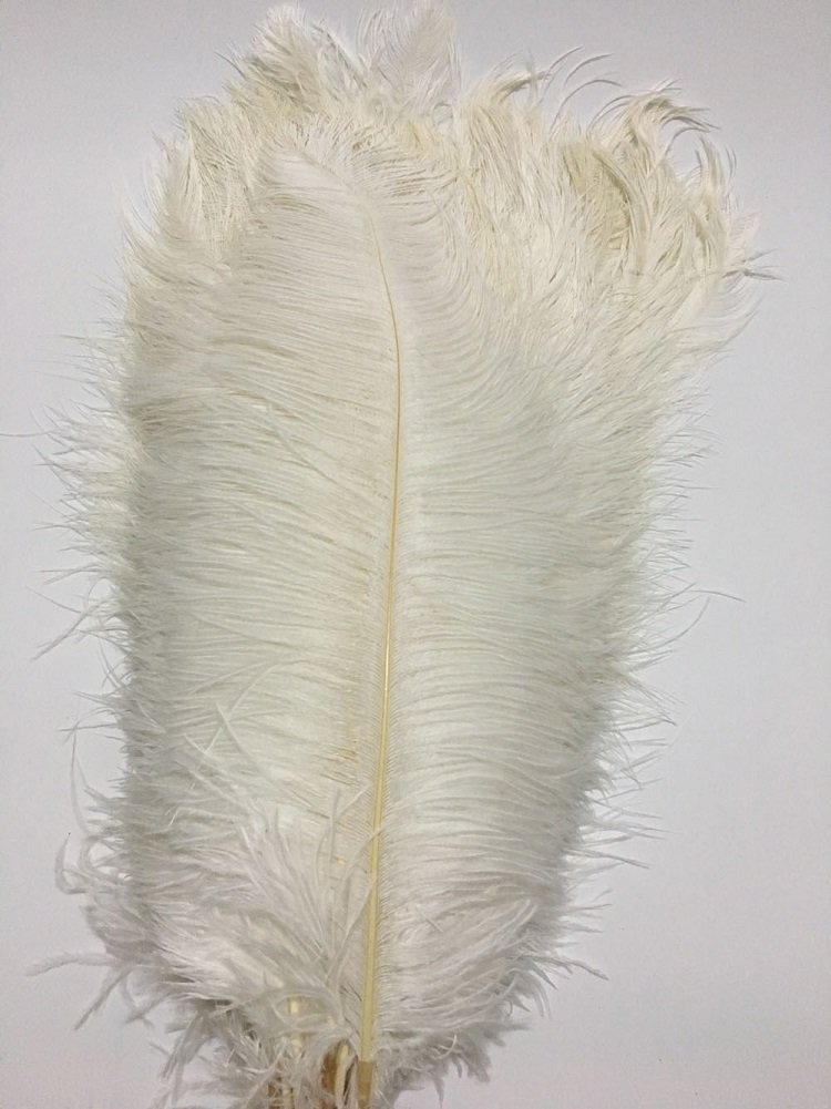 ADAMAI 150PCS Natural 13.7-15.7inch Ostrich Feathers Plume for Wedding Centerpieces Home Decoration (white)