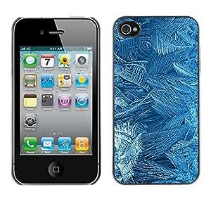 Cubierta de la caja de protección la piel dura para el Apple iPhone 4 / 4S - flowers pattern texture cold winter glass