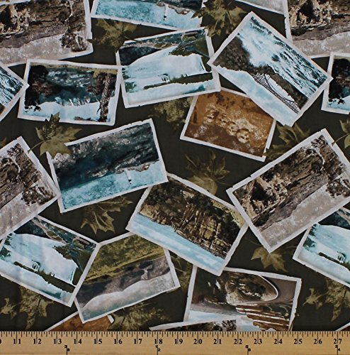 Cotton Postcards Nature Photographs Tourist Travel Scenic Views America American Road Trip National Parks USA Sightseeing Leaves Green North by Northwest Cotton Fabric Print by The Yard (D766.40) (Best National Park Roadtrip)