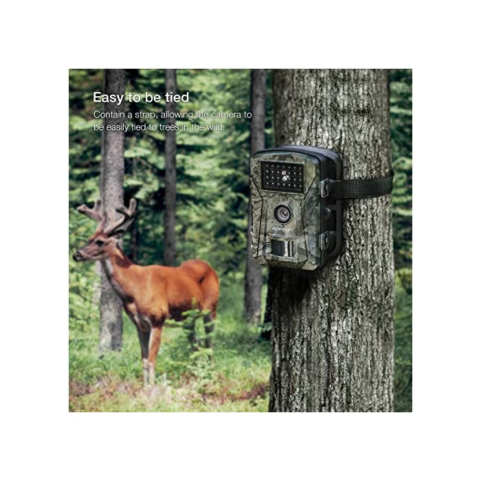 APEMAN Trail Camera 12MP 1080P 2.4″ LCD Game&Hunting Camera with 940nm Upgrading IR LEDs Night Vision up to 65ft/20m IP66 Spray Water Protected Design