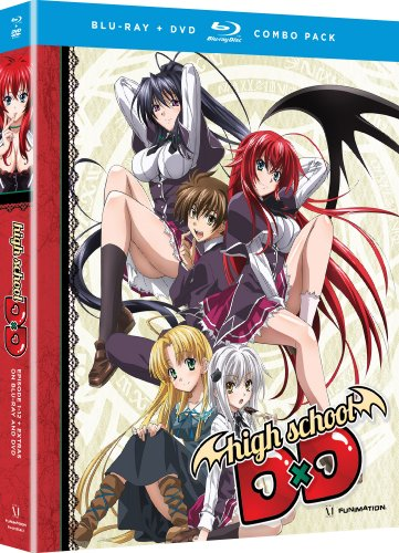 High School DxD: The Series [Blu-ray]