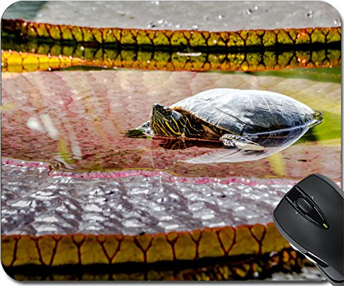 MSD Natural Rubber Mousepad Mouse Pads/Mat design 31021478 Western painted turtle chrysemys picta sitting on large lily pad basking in late morning sun in fresh water pond