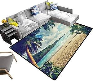 Modern Indoor Rugs Palm Tree, Luxury Shag Carpets Summer Beach Vintage Style Tropical Sunset Picture Print Textured Geometric Design Dark Green Sand Brown Pale Blue, 4 x 6 Feet