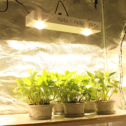 5 Best Cob Led Grow Lights Review Complete Buyer S Guide
