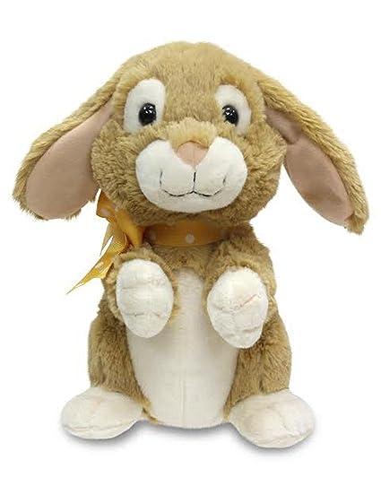 Amazon.com: Cuddle Barn Primavera de conejo de Pascua ...