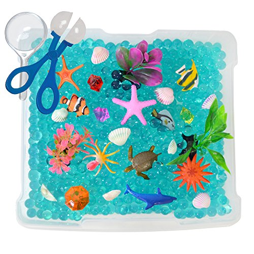 Discovery Box for Sensory Play - Ocean Exploration