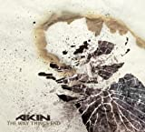 The Way Things End by Akin (2011-09-13)