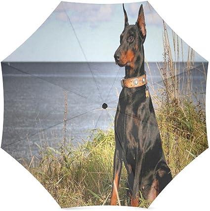 Custom Cute Doberman puppies Compact Travel Windproof Rainproof Foldable Umbrella
