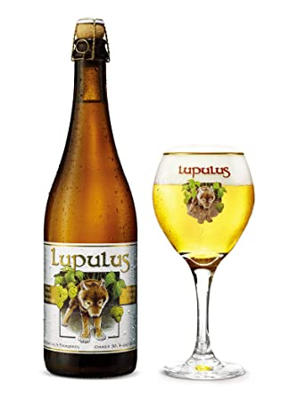 Lupulus Belge Lupulus ClEpicerie Bière 75 rxthQdCs