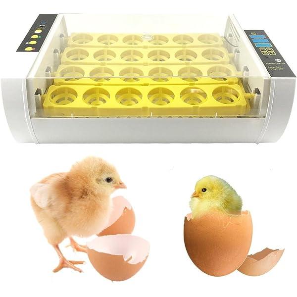 Ridgeyard 56 Huevos Incubadora Hatcher Control de temperatura ...