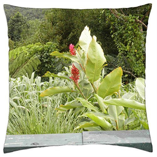 (St. Lucia wild flowers - Throw Pillow Cover Case (16)