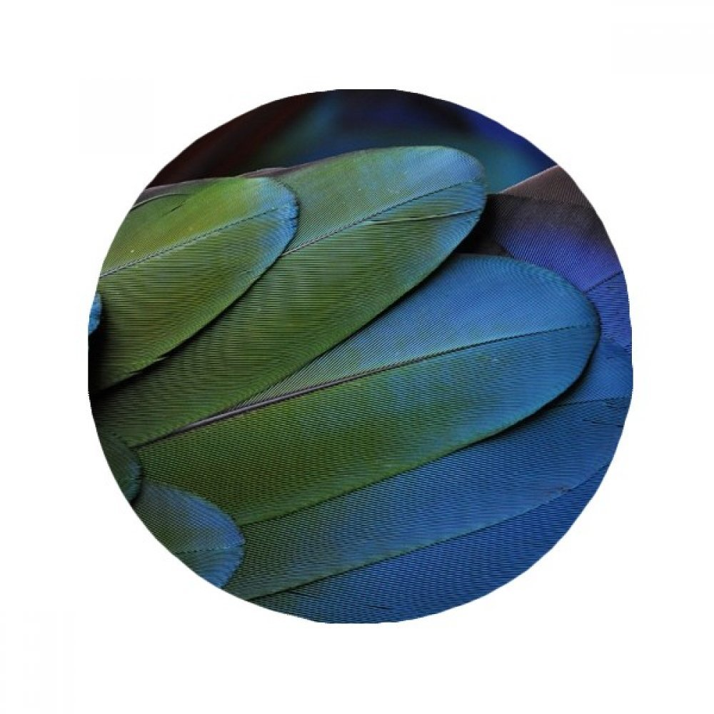 60X60cm DIYthinker Terrestrial Organism Wild Bird Feather Anti-Slip Floor Pet Mat Round Bathroom Living Room Kitchen Door 60 50Cm Gift