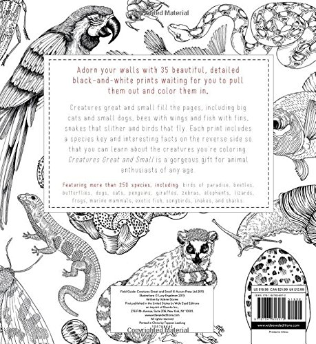 Field Guide: Creatures Great and Small: 35 prints to color: Valerie ...