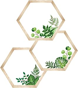 Schoolgirl Style Simply Boho Hexagons Cut-Outs—Assorted Greenery and Wood Grain, 6-Sided Bulletin Board Decorations, Classroom or Homeschool Décor (36 pc)