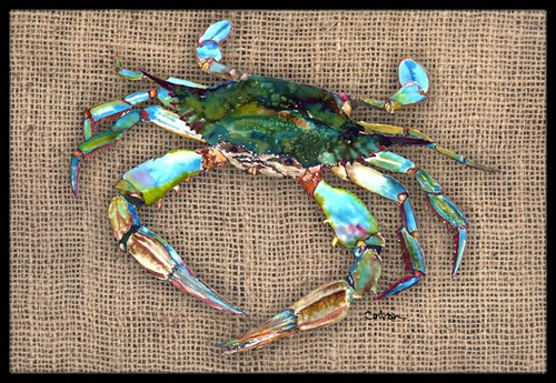 Carolines-Treasures-8731JMAT-Crab-Indoor-or-Outdoor-Doormat-24-x-36-Multicolor