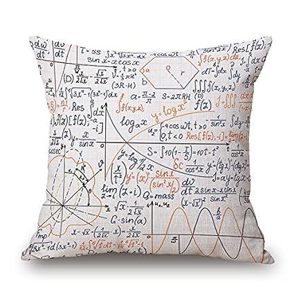 Amazon.com: Ling @ Mathematical Formula Cotton Throw Pillow ...