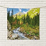 smallbeefly Outdoor Hand Towel Roztoka Stream Tatra National Park Carpathian Mountains Poland Woods Quick-Dry Towels Green Pale Green Tan Size: W 20'' x L 32''