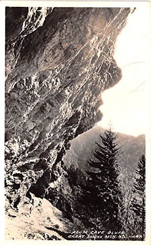 Alum Cave Bluff Great Smoky Mountains National Park, Tennessee postcard