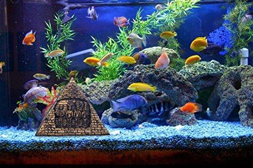 Nicepets - Adorno para decoración de acuario, pecera y terrario de resina de ruina pirámide Egipto: Amazon.es: Productos para mascotas