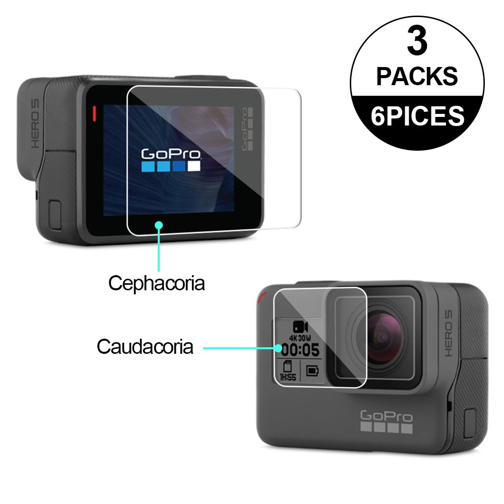 Awinner Glass for GoPro Hero5/Hero6, Screen Protector(Screen and Lens) Ultra-Clear Tempered-Glass for Hero 5 Action Camera(3-Pack) hero5-glass