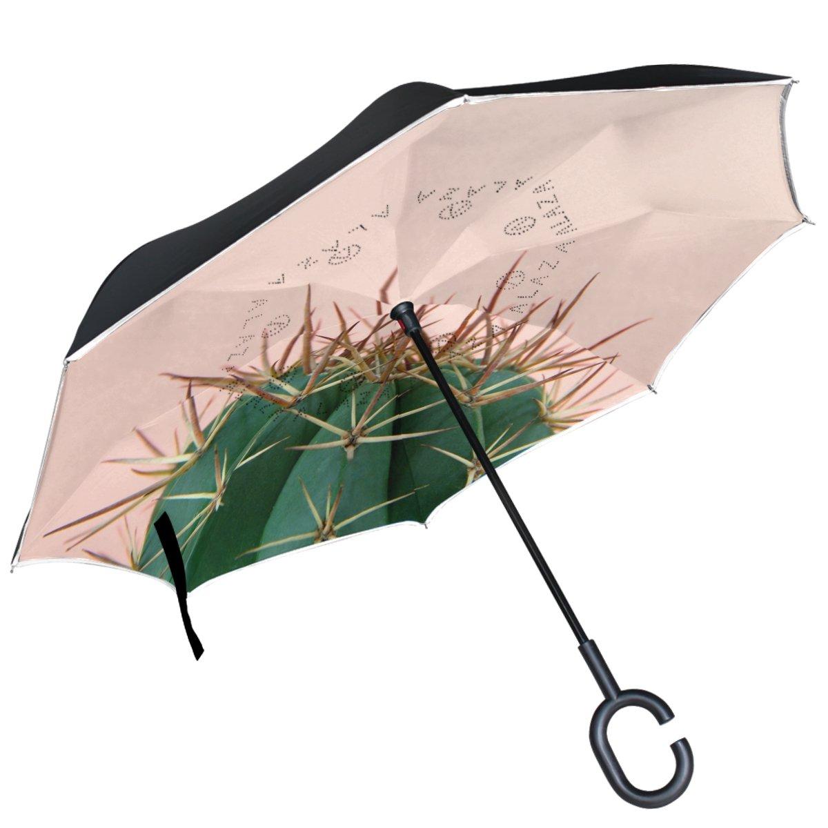 9521b8643b ALAZA Cactus Inverted Umbrella Double Layer Windproof Reverse Folding  Umbrella delicate