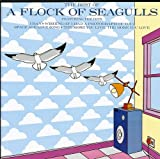 A Flock Of Seagulls: The Best Of (Audio CD)
