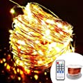 OrgMemory Copper LED String Lights, (80 Ft, 240 Leds, Warm White, UL Certified Power Adapter), Twinkle Lights with Remote, Firefly Lights for Garden, Xmas, Indoor and Outdoor Decor