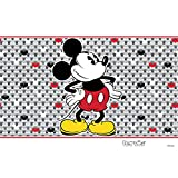 Tervis 1292884 Disney-Mickey Mouse Tumbler with
