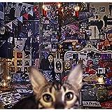 【早期購入特典あり】CATALOGUE 1987-2016(4CD+Blu-ray)(初回限定盤A)(30th  Anniversary オリジナルカレンダー2017-2018付)