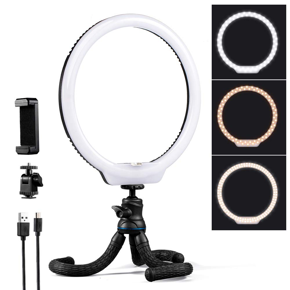 K&F Concept 10 inch Selfie Ring Light with Stand Phone Holder for Vlog Camera Video Smartphone YouTube Self-Portrait Makeup Shooting by K&F Concept