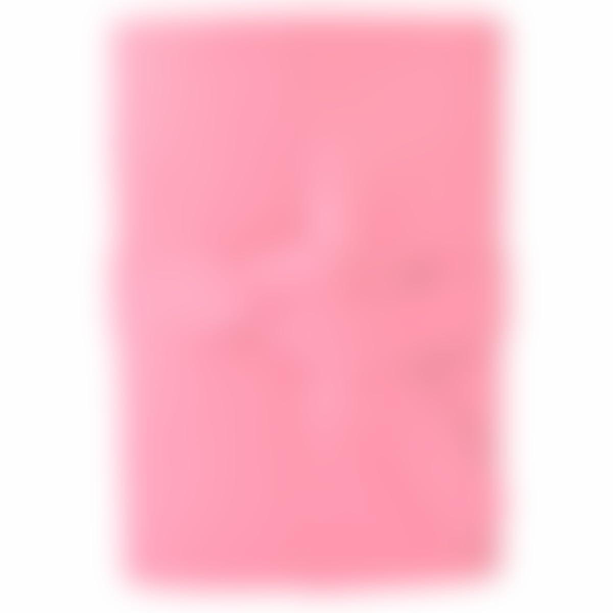 4x6 Pink Leather Journal b233dd966
