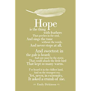 emily dickinson hope is the thing with feathers