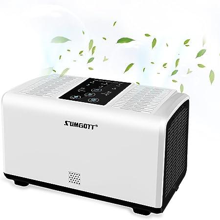 sumgott Purificador de Aire de Filtro HEPA Ionizador de Aire para Personas Alérgicas Filtro de Aire con Poco Ruido para Hogar Casas Oficinas Mascotas Fumadores Cocina: Amazon.es: Hogar