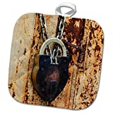 3dRose Danita Delimont - objects - Lock on a rusty steel door, Cow Hollow, San Francisco, California - 8x8 Potholder (phl_258853_1)