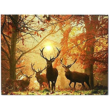 BANBERRY DESIGNS Deer Picture - LED Big Buck Wrapped Canvas Print - White Tail Deer in Autumn Forest - Wildlife Wall Decoration - Deer Decor - Glowing Canvas Picture - 16x12 Inch