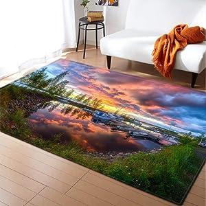 KFEKDT Rural Living Room Carpet 3D Flower Children's Room Game Pad Home Decoration Bedside Bedroom Carpet No-2 120x170cm