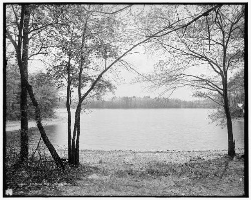 HistoricalFindings Photo: Henry David Thoreau's Cove,lakes,Walden Pond,Concord,Massachusetts,MA,c1908