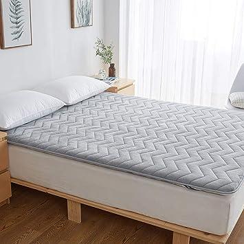 Tatami Cama colchón,Dormitorio colchones,Franela Invierno Cálido Pinzas de Casas del Estudiante-A 90x200cm(35x79inch): Amazon.es: Hogar