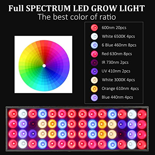 The 8 best grow light kits