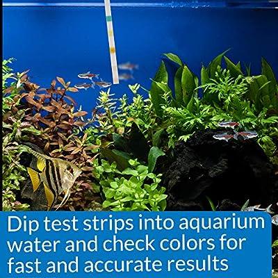 API - Tiras de Prueba 5 en 1 de Agua Dulce y Salada para acuarios ...