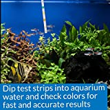 API 5-IN-1 TEST STRIPS Freshwater and Saltwater