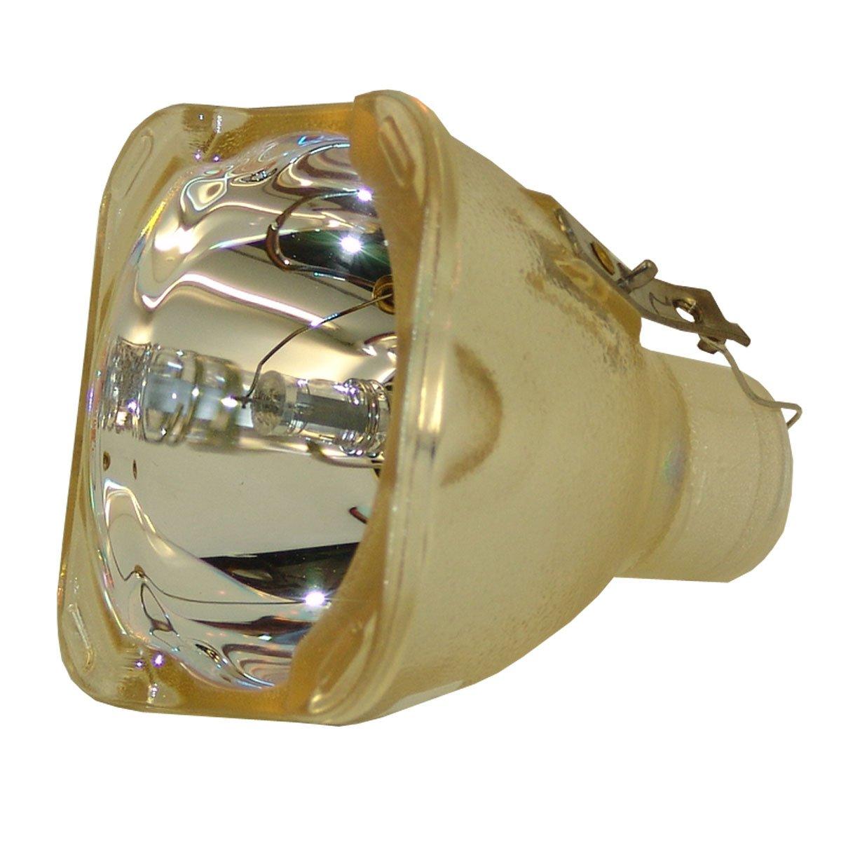 Lutema OEM プロジェクター交換用ランプ ハウジング/電球付き Vivitek D965用 Platinum (Brighter/Durable) B07KTL44MB Lamp Only Platinum (Brighter/Durable)