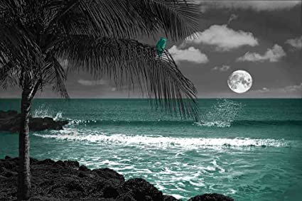 The Night Watcher   Gray Background With 3 Decor Colors   Beach, Ocean,  Seascape