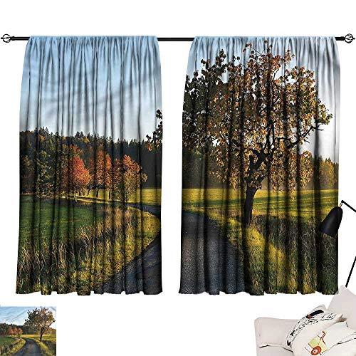 Curtains/Panels/Drapes Darkening Curtains Landscape,Autumn Road Lone Tree,Sliding Curtain