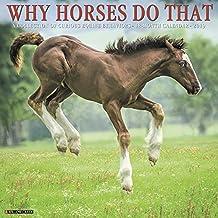 Why Horses Do That 2019 Wall Calendar