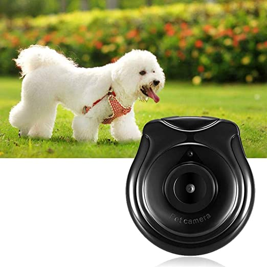 Amazon.com : Aolvo Dog Collar Camera, USB Digital Pet Collar Camera Mini DVR Video Recorder Monitor for Dog Cat Puppy, Compact Size and Lightweight Support ...
